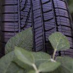 Goodyear va produire des pneus en caoutchouc à base d'huile de soja