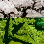 Road Trip au Japon en Lamborghini Aventador S