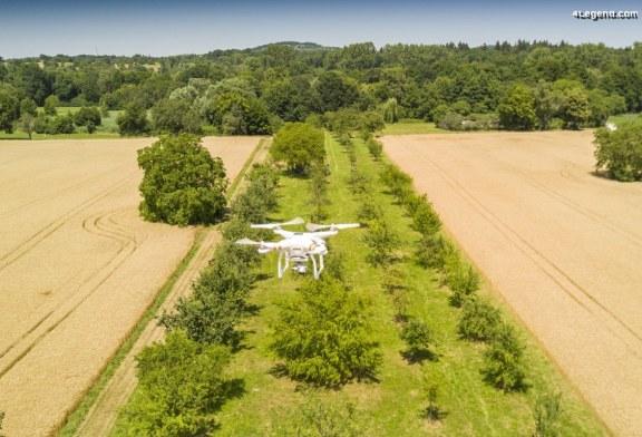La Fondation environnementale Audi soutient les vols de drones pour mesurer et conserver les vergers mixtes