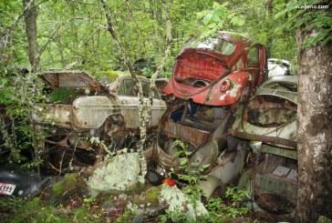 A la découverte d'un Trésor perdu en Suède avec des Audi, des DKW et des VW