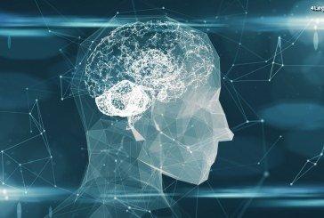L'intelligence artificielle est pour Porsche la technologie la plus importante pour l'avenir