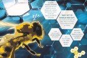 Recherche en IA pour les abeilles : we4bee intègre le programme « AI for Earth » de Microsoft